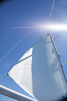 Sporty Winds