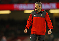 1st February 2020; Millennium Stadium, Cardiff, Glamorgan, Wales; International Rugby, Six Nations Rugby, Wales versus Italy; Wales defence coach Byron Hayward during the warm up