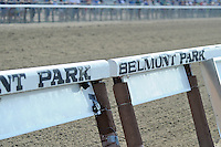 Scenes from around the track on Metropolitan Handicap Day on May 28, 2012 at Belmont Park in Elmont, New York.  (Bob Mayberger/Eclipse Sportswire)