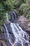 Newell Falls - Dorigo World Heritage park - Dorrigo NSW