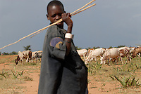 "Afrika Uganda Karamoja , Volk der Karimojong , Hirten mit Herde auf Suche nach Wasser und Futter -  Nomaden Halbnomaden ethnische Gruppe Afrikaner Indigene Voelker afrikanisch xagndaz | .Africa Uganda Karamoja , Karimojong a pastoral tribe , shephard with livestock searching for water and fodder -  indigenous people  .| [ copyright (c) Joerg Boethling / agenda , Veroeffentlichung nur gegen Honorar und Belegexemplar an / publication only with royalties and copy to:  agenda PG   Rothestr. 66   Germany D-22765 Hamburg   ph. ++49 40 391 907 14   e-mail: boethling@agenda-fototext.de   www.agenda-fototext.de   Bank: Hamburger Sparkasse  BLZ 200 505 50  Kto. 1281 120 178   IBAN: DE96 2005 0550 1281 1201 78   BIC: ""HASPDEHH"" ,  WEITERE MOTIVE ZU DIESEM THEMA SIND VORHANDEN!! MORE PICTURES ON THIS SUBJECT AVAILABLE!! ] [#0,26,121#]"
