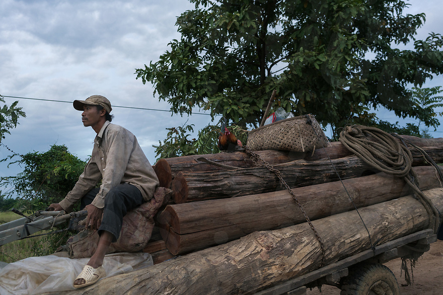 December 17, 2016 - Kratie (Cambodia). Logs from unknown origins are transported down a back road on the outskirts of Kratie. © Thomas Cristofoletti / Ruom