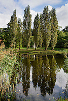 Rousseau-Insel und Neumarks Garten im Wörlitzer See, Parkanlage Wörlitzer Garten, Sachsen-Anhalt, Deutschland, Europa, UNESCO-Weltkulturerbe<br /> Rousseau-Island  and Neumark's Garden in Wörlitzlake, Wörlitz Gardens, Saxony-Anhalt, Germany, Europe, UNESCO-World Heritage