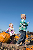 USA, Oregon, Bend, young children play amongst the pumpkins at the annual pumpkin patch located in Terrebone near Smith Rock State Park