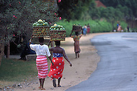 Women carrying baskets of papaya fruit (Carica papaya) to the market