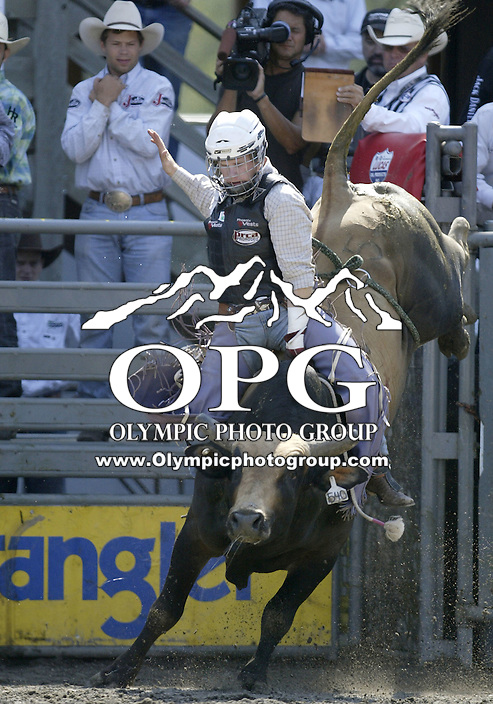 30 Aug 2009:  Tate Stratton riding the bull Smoke Signal scored a 88.5 on his ride during the Extreme Bulls tour stop in Bremerton, Washington.  Bremerton was the last stop in the Wrangler Million Dollar Pro Rodeo Silver Tour for 2009.