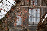 Shirakawa - go on Wednesday 16 January 2019. <br /> Photo by Masanori Udagawa. <br /> www.photowellington.photoshelter.com