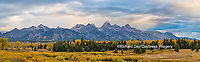 67545-08918 Fall color from Blacktail Ponds Overlook, Grand Teton National Park, WY