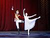 Nutcracker<br /> English National Ballet <br /> at The London Coliseum, London, Great Britain <br /> rehearsal <br /> 13th December 2016 <br /> Choreography by Wayne Eagling <br /> <br /> Alina Cojocaru as Clara <br /> <br /> <br /> James Forbat as Nutcracker <br /> <br /> Photograph by Elliott Franks <br /> Image licensed to Elliott Franks Photography Services