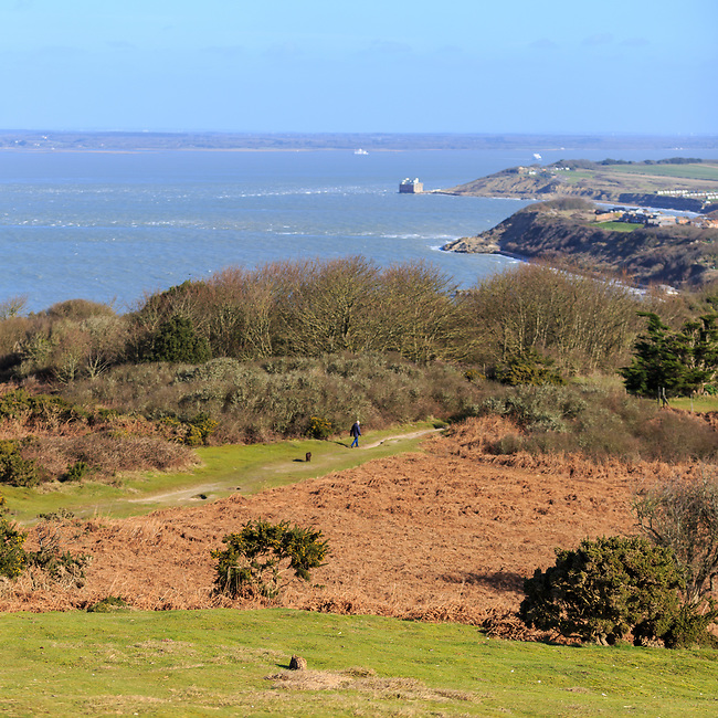 Spring at Headon Warren on the Isle of Wight
