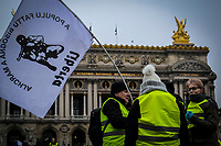5&ordm; Acto de los Chalecos Amarillos.<br /> <br /> Par&iacute;s Francia. 15 de diciembre de 2018.- La quinta manifestaci&oacute;n de los chalecos amarillos<br /> realizada este s&aacute;bado 15 de diciembre, registr&oacute; una menor participaci&oacute;n<br /> y violencia en algunos puntos estrategicos en Par&iacute;s entre manifestantes<br /> y las fuerzas del orden.<br /> <br /> Este d&iacute;a observ&oacute; menos gente, menos violencia y m&aacute;s control, los operativos<br /> comenzaron desde el viernes por la tarde con registros de bolsos y<br /> petici&oacute;n de identificaciones.<br /> <br /> La manifestaci&oacute;n transcurri&oacute; en sus primeras horas sin incidentes<br /> fuertes.&nbsp;En la Plaza de Opera se reunieron en calma, cantaron el himno<br /> franc&eacute;s y le dedicaron un minuto de silencio a las v&iacute;ctimas de<br /> Estrasburgo.<br /> <br /> En los Campos El&iacute;seos y Opera, lugares favoritos para las<br /> manifestaciones en la capital francesa, hubo la necesidad de lanzar<br /> gases lacrim&oacute;genos contra un grupo que intent&oacute; forzar una barrera<br /> polic&iacute;a, pero mucho menos que en los s&aacute;bados anteriores.<br /> <br /> Las cifras oficiales indican que se registraron en Paris 100 arrestos (500 menos que la semana pasada). Se hab&iacute;an movilizado 8000 polic&iacute;as (2000<br /> menos), y la participaci&oacute;n total a la manifestaci&oacute;n a nivel nacional se<br /> estimo a 60000 personas (casi dos veces menos que la semana<br /> pasada). <br /> Si bien no est&aacute; por demostrar que el movimiento se est&aacute;<br /> agotando, la cuesti&oacute;n ser&iacute;a saber si es una consecuencia de los<br /> anuncios del inicio de semana del Presidente Emanuel Macron, o el<br /> extremo fr&iacute;o o a las fiestas que se acercan.<br /> <br /> Era muy importante que comenzaran a cambiar el panorama ya que las<br /> empresas francesas han perdido entre el 20% y 50% de facturaci&oacute;n.<br /> Entre el