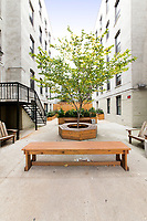 Courtyard at 24-39 38th Street