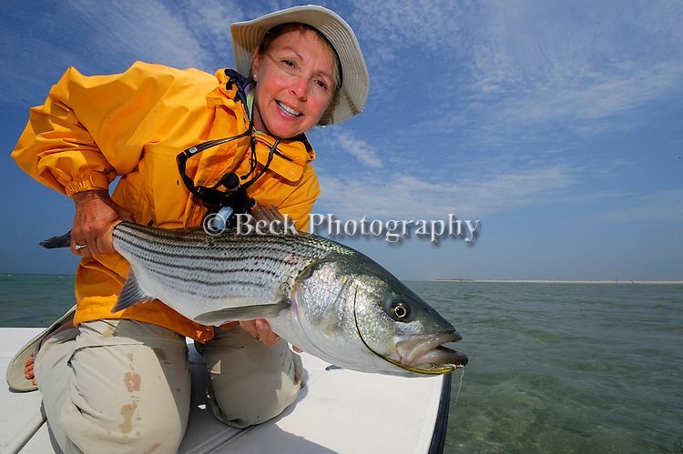 CATHY BECK WITH A STRIPED BASS