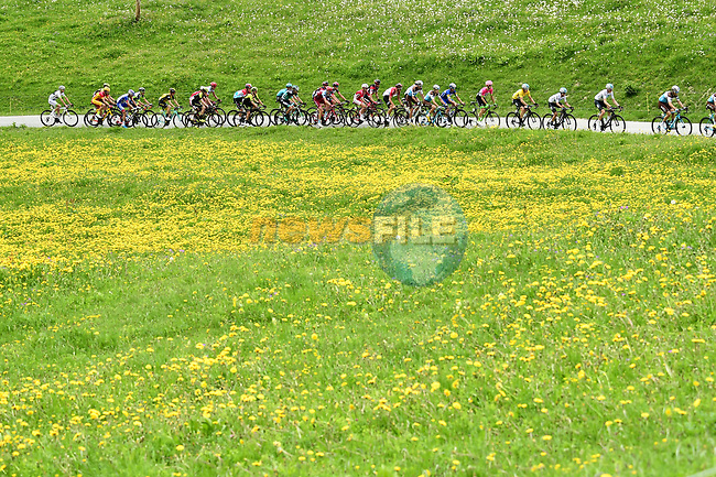 The peleton including race leader Geraint Thomas (WAL) Team Sky Yellow Jersey in action during Stage 6 of the 2018 Criterium du Dauphine 2018 running 110km from Frontenex to La Rosiere, France. 9th June 2018.<br /> Picture: ASO/Alex Broadway | Cyclefile<br /> <br /> <br /> All photos usage must carry mandatory copyright credit (© Cyclefile | ASO/Alex Broadway)