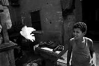 Cairo, Egypt, The City of the Dead, 1998 - Boy releases a pet dove in the family kitichen area while his mother sleeps next to a grave. Some 1/2 million people inhabit the massive, 7km long cemetery that borders the easter side of Cairo.  They form a complete civilization living on top of, within, and around the graves of their ancestors.