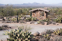 A bathroom stands among Saguaro and Engelman's prickly pear cactus in the picnic area near the Signal Hill trail in Saguaro National Park West (Tucson Mountain District) near Tucson, Arizona, USA.