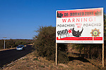 Sign on roadside to deter rhino poachers explaning rhinos in the area have been dehorned, Hoedspruit, Limpopo, South Africa, June 2012