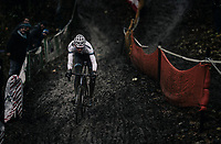 Mathieu van der Poel (NED/Beobank-Corendon) solo's to yet another race win (his 19th of the season...)<br /> <br /> Elite Men's Race<br /> CX Vlaamse Druivencross Overijse 2017