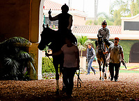 10-27-17 Breeders Cup Morning Workouts