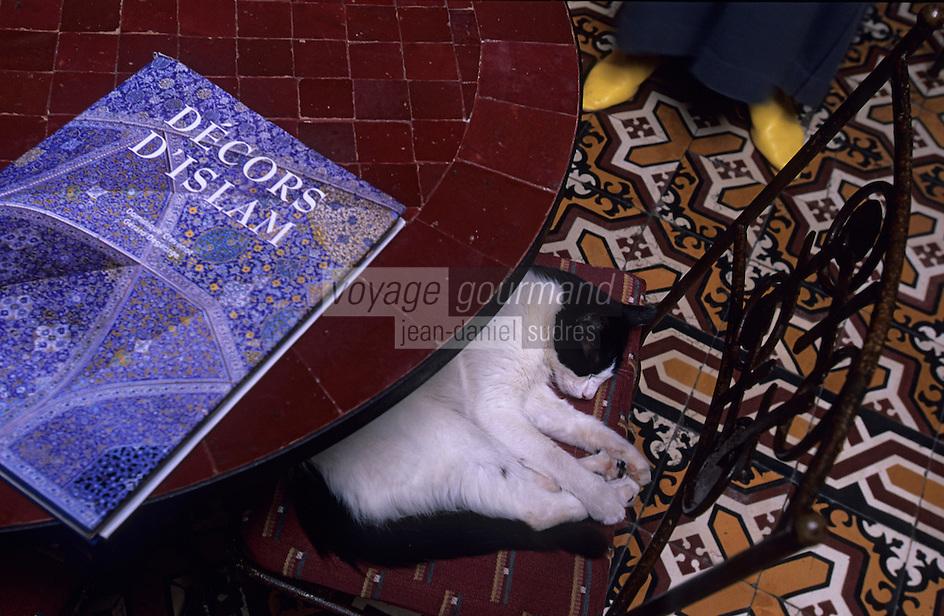 "Afrique/Maghreb/Maroc/Essaouira : ""Taros"" Café-Restaurant 2 rue de la Skala"