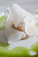 Europe/France/Provence-Alpes-Côte d'Azur/13/Bouches-du-Rhône/Marseille:Araignée de mer et Radis noir - recette de Gérald Passédat du restaurant : Le Petit Nice