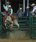 Jordan Wacey Spears from Redding, CA competes in the Bull Riding event during Wolf Pack Night at the Reno Rodeo on Wednesday, June 22, 2016.