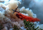 August 20, 1992 Angels Camp, California -- Old Gulch Fire— Big air tanker risks fire's changing wind currents to drop retardant near Avery.  The Old Gulch Fire raged over some 18,000 acres, destroying 42 homes while threatening the Mother Lode communities of Murphys, Sheep Ranch, Avery and Forest Meadows.