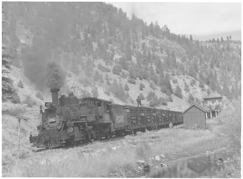 North facing view of RGS #461 leaving Brown with a southbound stock train.<br /> RGS  Brown, CO  Taken by Richardson, Robert W. - 9/26/1951