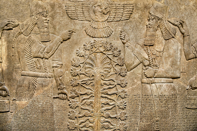 Assyrian relief sculpture panel  of King  Ashurnasirpal II dressed in Ritual robes, he is depicted twice on either side of the central sacred tree of life.  Above the tree of life is a winged disc with possible the sun god Shamash in it.  From Nimrud, Iraq,  865-860 B.C North West Palace. Room B, panel 23.  British Museum Assyrian  Archaeological exhibit no WA 124531.
