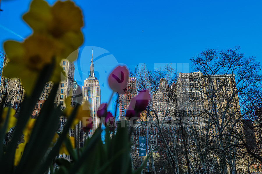 NEW YORK, EUA, 23.04.2018 - CLIMATE-EUA - Flores são vistas com o Empire States Building ao fundo na ilha de Manhattan na cidade de Nova York nesta segunda-feira, 23. (Foto: William Volcov/Brazil Photo Press)