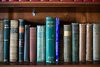 Books about Ireland stand on shelves in the library in Boston College's Connolly House in Chestnut Hill, Massachusetts, which houses the Irish Studies Program and other Irish programs at the school.