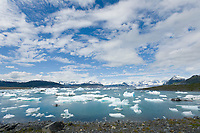 Icebergs from Columbia Glacier in Columbia Bay, Prince William Sound, Alaska