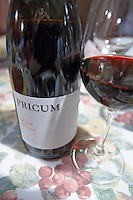 prieto picudo Pricum bottle Bodegas Margon , DO Tierra de Leon , restaurant Imprenta Casado, Leon spain castile and leon