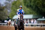 OCT 06: Elate and Jose Ortiz at the Juddmonte Spinster Stakes at Keeneland Racecourse, Kentucky on October 06, 2019. Evers/Eclipse Sportswire/CSM