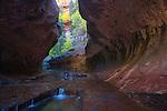 Subway Region, Zion National Park, Utah