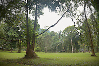 FOREST_LOCATION_90087