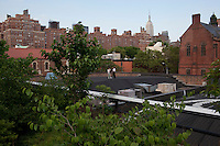 NEW YORK - JUNE 27; A view from the High Line in New York City on June 26, 2011. The High Line park opened in 2009 on a disused elevated train track on Manhattan's west side.(Photo by Landon Nordeman)