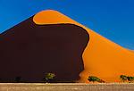 Wind-driven slopes of a giant sand dune, Namib-Naukluft National Park, Namibia