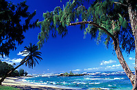 Malaekahana Beach Park on the North shore of Oahu