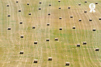 Haystacks bale aligned in field (Licence this image exclusively with Getty: http://www.gettyimages.com/detail/95574882 )