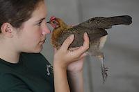 Riley Edmonds of Blaine, WA with Athena, a light brown dutch chicken, Intermediate Champion-6th yr-4H Feathered Friends-NW Washington Fair. August 19, 2009 PHOTOS BY MERYL SCHENKER