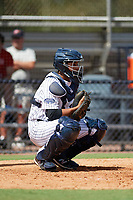 New York Yankees catcher Hemmanual Rosario (15) during an Instructional League game against the Baltimore Orioles September 23, 2017 at the Yankees Minor League Complex in Tampa, Florida.  (Mike Janes/Four Seam Images)