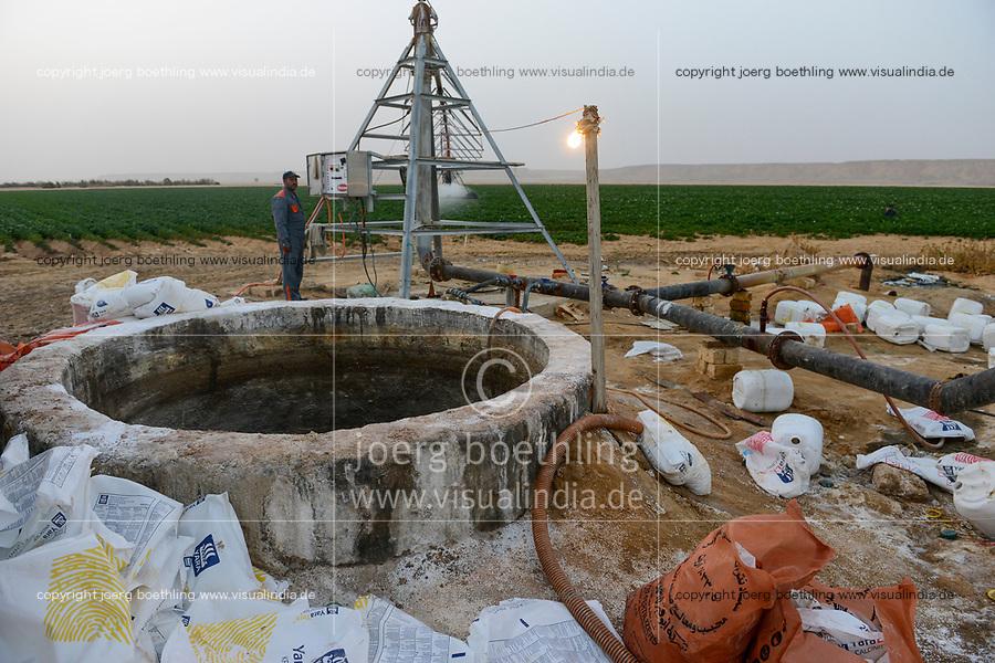 EGYPT, Farafra, potato farming in the desert, pivot circle irrigation at United Farms, chemical fertilizer and phosphoric acid are added with the sprinkle watering, the fossile groundwater from the Nubian Sandstone Aquifer is pumped from 1000 metres deep wells  / AEGYPTEN, Farafra, United Farms, Kartoffelanbau in der Wueste, die kreisrunden Felder werden mit Pivot Kreisbewaesserungsanlagen mit fossilem Grundwasser des Nubischer Sandstein-Aquifer aus 1000 Meter tiefen Brunnen bewaessert, der Bewaesserung werden chemische Duenger und Phosphorsaeure zugesetzt