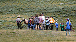 Yellowstone National Park tourists viewing a grizzly sow and three cubs using the park ranger's spotting scope.