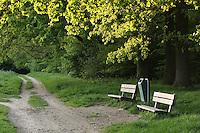 Park in Netherlands