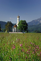 The church of St Coloman and it's onion shaped dome against the mountains, in a spring meadow showing red campions. Located below the castle of Neuschwanstein near Füssen, Bavaria, Germany.