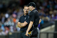 Winston-Salem Dash trainer Josh Fallin chats with home plate umpire Ryan Wilhelms between innings of the game against the Buies Creek Astros at BB&T Ballpark on April 13, 2017 in Winston-Salem, North Carolina.  The Dash defeated the Astros 7-1.  (Brian Westerholt/Four Seam Images)