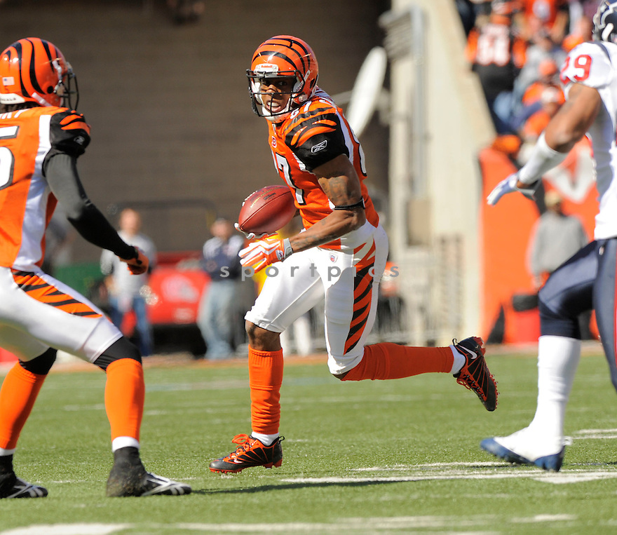 ANDRE CALDWELL of the Cincinnati Bengals in action during the Bengals game against Houston Texans  in Cincinnati, OH on October 18, 2009.  The Texans  beat the Rams 28-17..