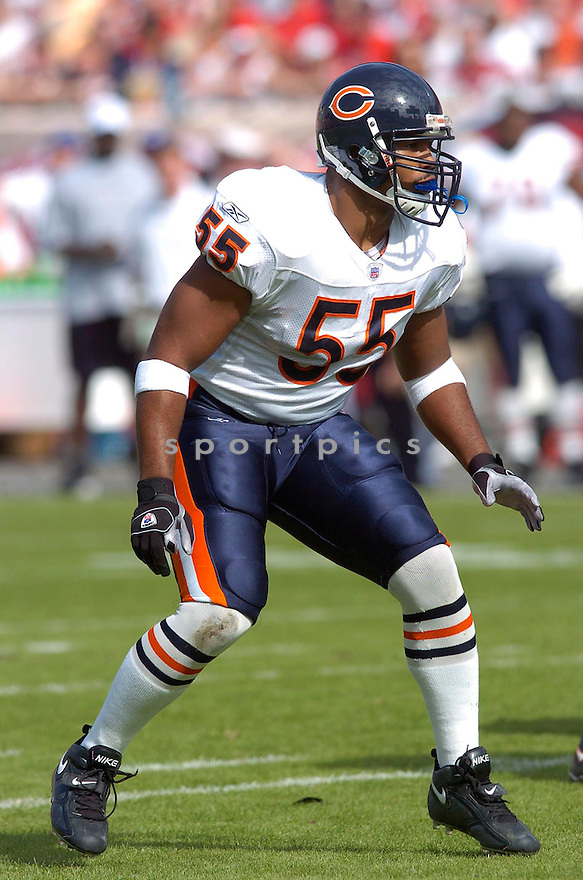 Lance Briggs, of the Chicago Bears, in action during their game against the Tampa Bay Buccaneers on November 27, 2005.  .Chris Bernachhi / SportPics..Bears win 13-10