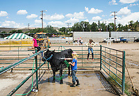 Demolition Derby and the 4H competition at the Routt County Fair in Hayden, Colorado, Friday, August 14, 2015.<br /> <br /> Photo by Matt Nager